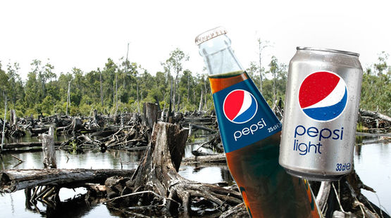Petition pepsico trashing rainforests for 450 000 tons for Montage des stands