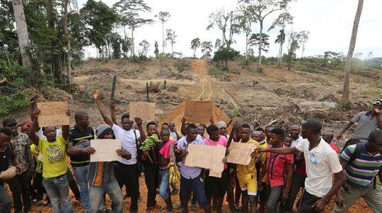 In Nigeria demonstrieren Kleinbauern gegen Palmöl-Plantagen von Wilmar.