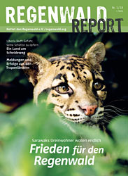 Cover Regenwald Report 01/2014