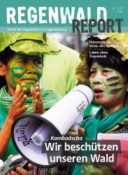 Cover Regenwald Report 01/2013