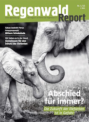 Cover Regenwald Report 01/2015
